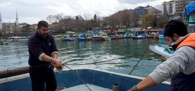 Balıkçılar hamsi avının kısmi olarak durdurulmasının ardından bolluk bekliyor
