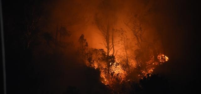 Bartın'ın İnkum beldesinde çıkan orman yangını kontrol altına alındı
