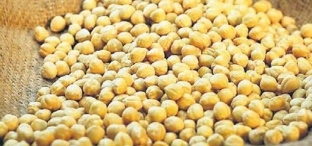Fındık ihracatı 300 tona yükseldi