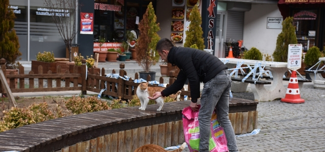 Gümüşhane ve Trabzon'da sokak hayvanlarına mama desteği