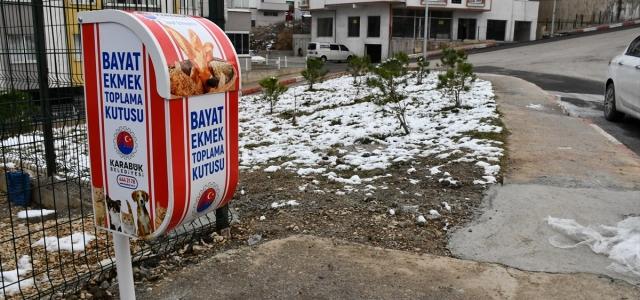 Karabük Belediyesi sokak hayvanları için bayat ekmek toplayacak