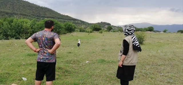 Karabük'te tedavisi tamamlanan leylek doğaya bırakıldı