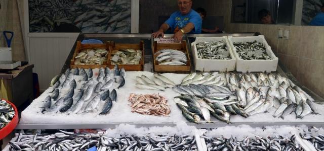 Karadeniz'de ağlara takılmaya başlayan hamsi balıkçıları umutlandırdı