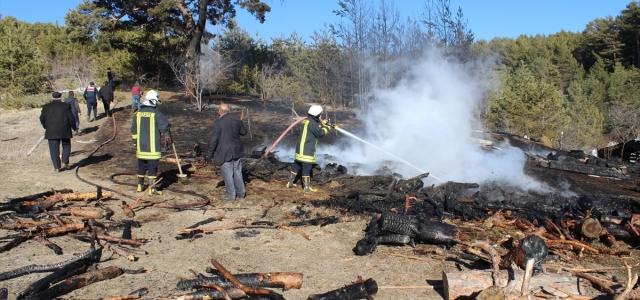 Kastamonu'daki yangında 15 dekar ormanlık alan zarar gördü, 60 arı kovanı yandı