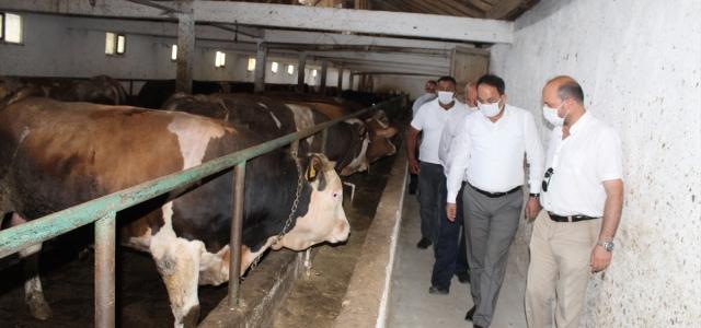 Kaymakam Ertürkmen'den Et Üretim Çiftliği'ne ziyaret