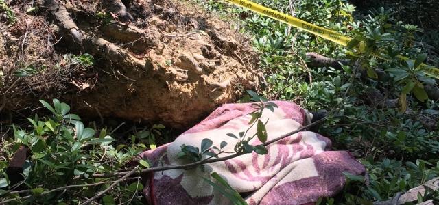 Kesilen ağacın altında kalan kişi öldü