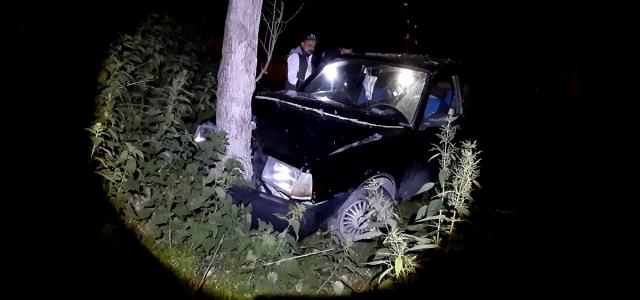 Mudurnu'da ağaca çarpan otomobilin sürücüsü yaralandı