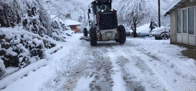 Ordu'da kar nedeniyle kapanan yollar açıldı