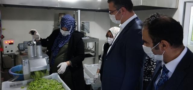 Ordu'da kurulan meyve sebze işleme tesisi kadınlar için gelir kapısı olacak
