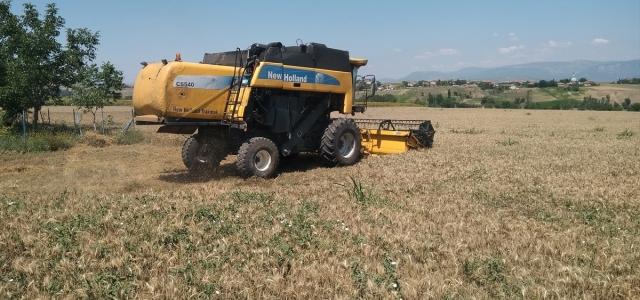 Samsun'da buğday hasadı etkinliği düzenlendi
