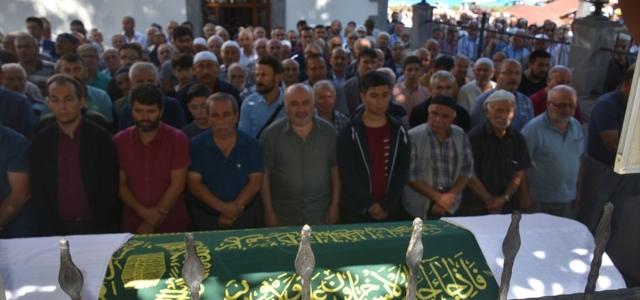 Sinop'ta ceviz ağacından düşen kişi öldü