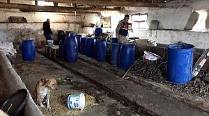 Amasya'da 2 bin 572 litre sahte içki ele geçirildi