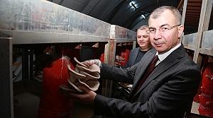 Artvin Valisi Doruk, kayın mantarı üretim tesisinde incelemelerde bulundu