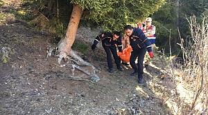 Artvin'de kayıp kişi ormanlık alanda ölü bulundu