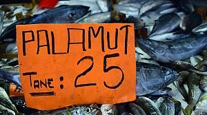 Batı Karadeniz'de palamut sezonu bitiyor