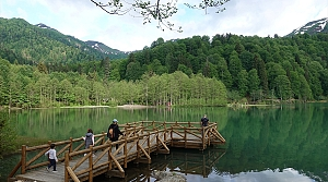 Doğa harikası Borçka Karagöl'de Kovid-19 sessizliği sona erdi