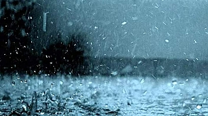 Doğu Karadeniz için yağış uyarısı