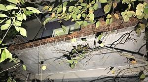 Halı silkelerken balkon duvarı yıkıldı: 2 yaralı