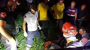 Rize'de çıktığı ağaçta elektrik akımına kapılan kişi öldü