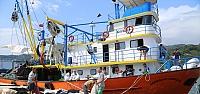 """Karadenizli balıkçılarda """"vira bismillah""""..."""