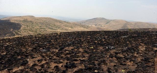 Tokat'taki tarla yangını söndürüldü