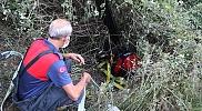 Düzce'de sulama kanalına düşen ineği itfaiye ekipleri kurtardı