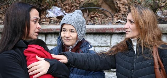 Zonguldak'ta sokakta yaşayan 7 köpek yavrusu ölü bulundu