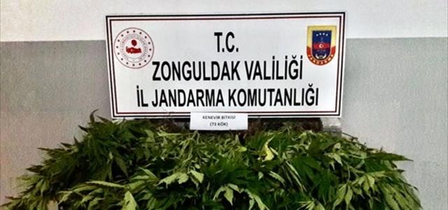 Zonguldak'ta uyuşturucu operasyonlarında 4 kişi gözaltına alındı